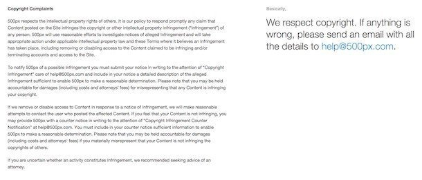 Copyright Complaints in 500px Terms of Service