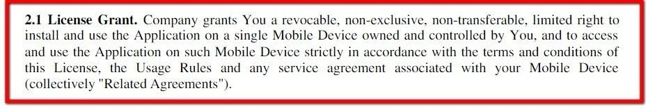 Example of License Grant Clause