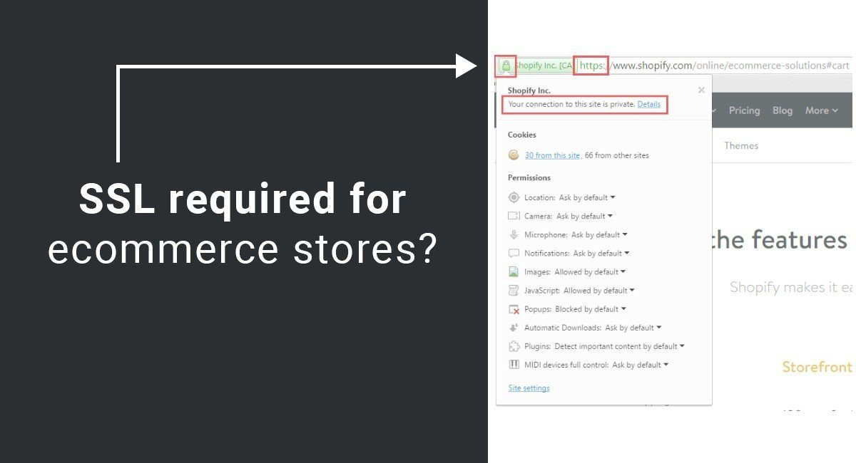 Is SSL Required on e-Commerce Stores