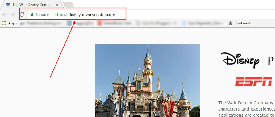 Walt Disney Privacy Center: Privacy Policy URL