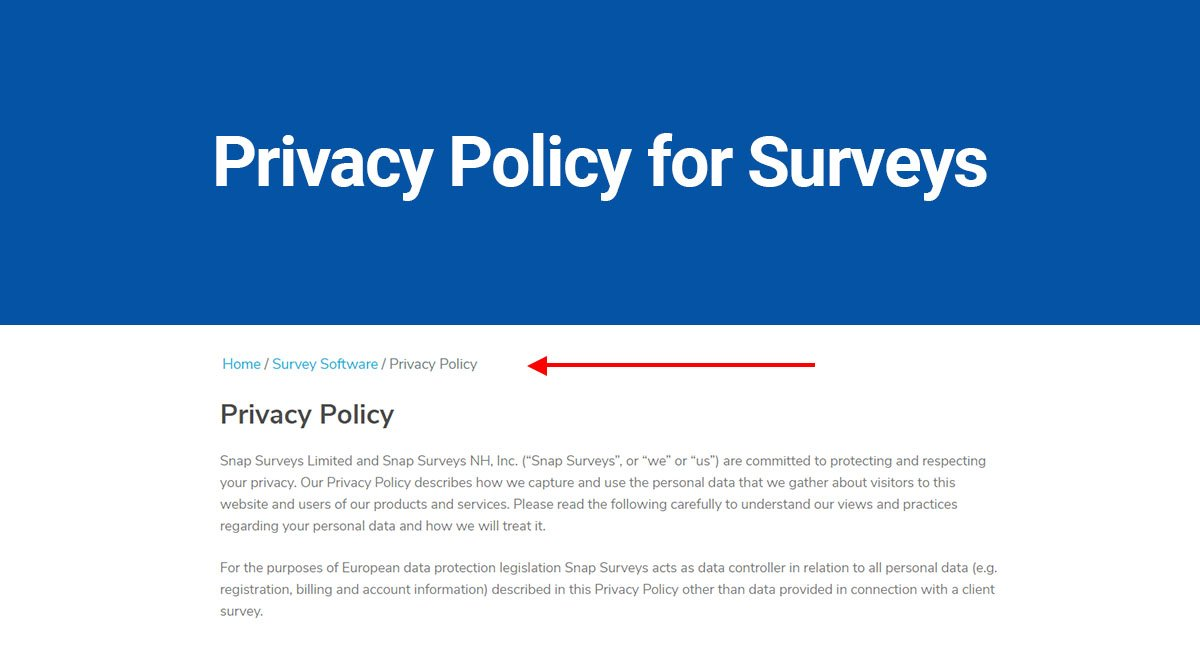 Image for: Privacy Policy for Surveys