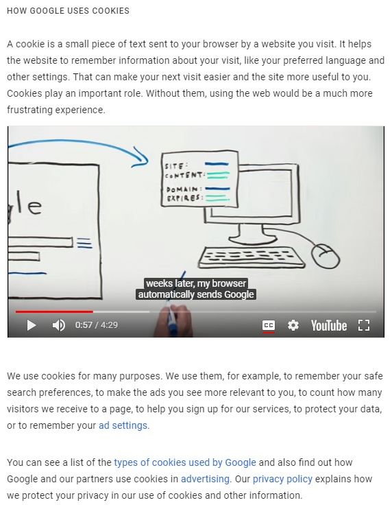 Google Privacy Policy: Types of cookies used - video and clause
