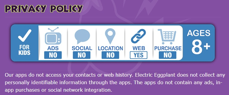 Screenshot of Electric Eggplant's Privacy Policy intro