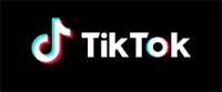 Small TikTok logo