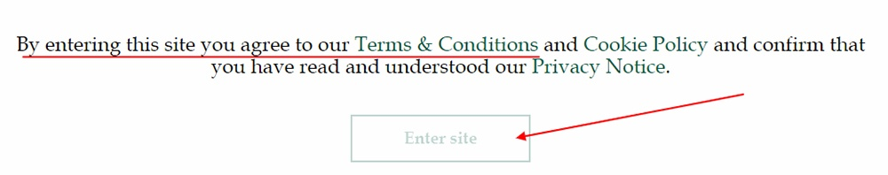 Stewart Investors: Agree to Terms and Cookie Policy by clicking enter site button