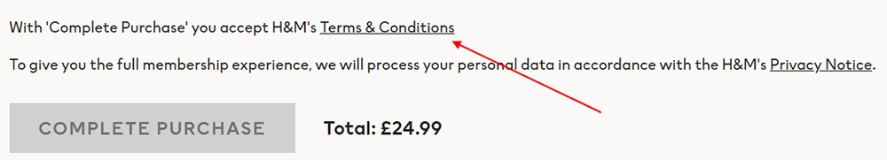 H and M checkout screen with Accept Terms and Conditions highlighted
