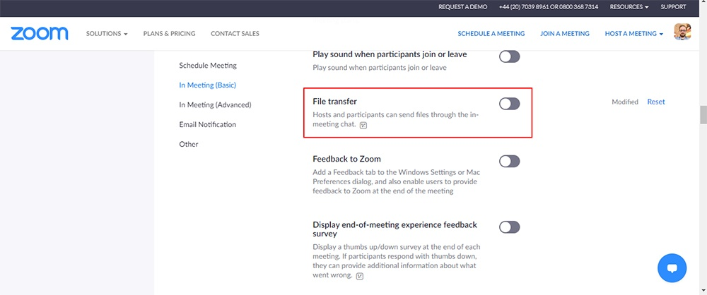 Zoom: In Meeting Basic - File Transfer option highlighted
