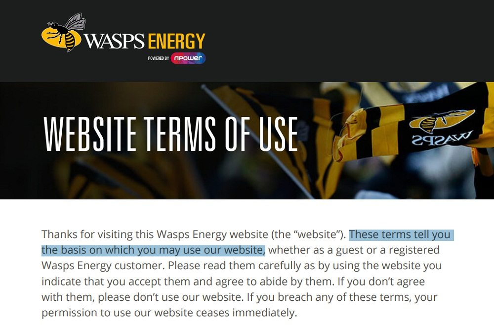 Wasps Energy Website Terms of Use: Introduction clause