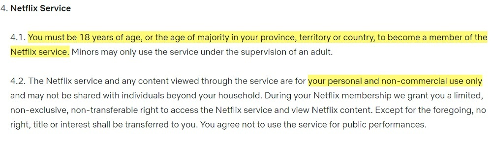 Netflix Terms of Use: Netflix Service clause - Age and personal non-commercial use sections highlighted