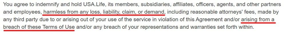 USA Life Terms of Use: Indemnity clause